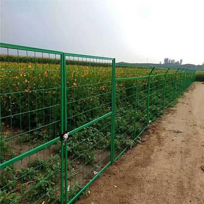 铁网围栏 绿色果园铁网围栏厂家批发防护网护栏