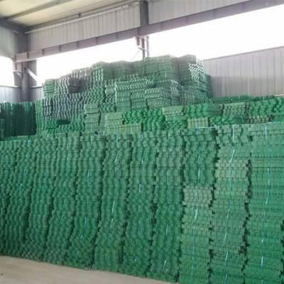 植草格-大广新材料-塑料植草格