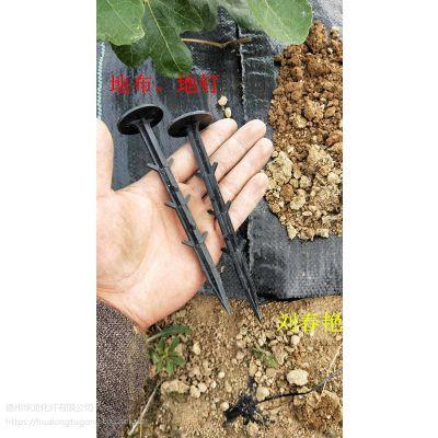 [厂家直销】pp园艺盖草布 耐老化果园用防草地布3-5年使用年超久