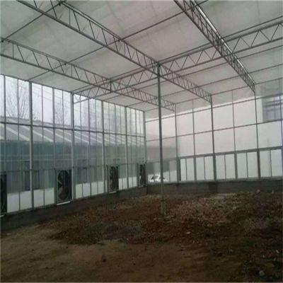 江苏阳光板温室大棚价格 盛鸿一站式打造定制设计