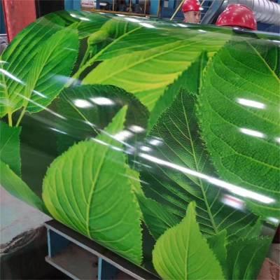 四川资阳现货销售彩涂板 聚酯彩涂板 印花彩涂卷板 木纹转印彩涂卷板 规格齐全