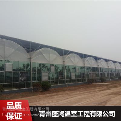 盛鸿多用双拱双膜温室_蔬菜种植双拱双膜温室厂家零售