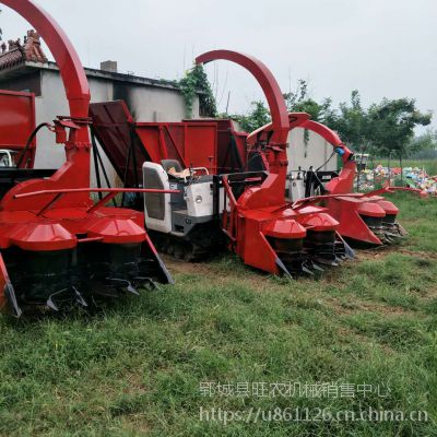 养牛驴专用青贮机新型背负式玉米秸秆青储机履带式苜蓿草收割机