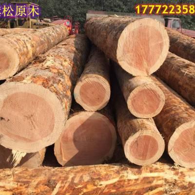 南京建筑木方价格行情
