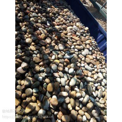石屹批发供应鹅卵石,园艺石,铺路5-8直径各色河卵石量大从优