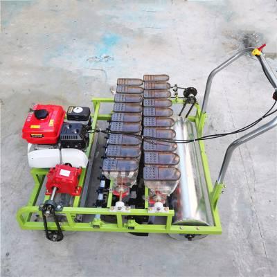 菜种花卉籽播种机 手推式方便耐用的精播机 蔬菜种子专用精播机