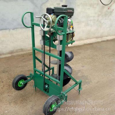 绿化种植挖坑机 植树设备地打窝机 启航苹果树打洞机
