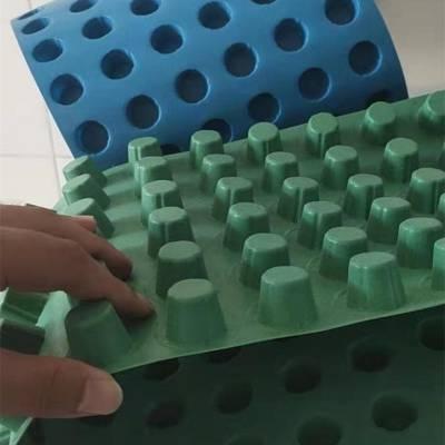 pe排水板 25厚聚丙烯疏水板 周口20排水板