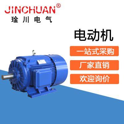 电动机 琻川电气 电动机批发 电动机厂家