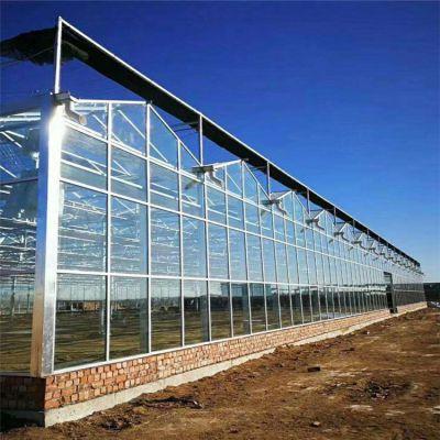 深圳智能玻璃温室大棚厂家 盛鸿温室设计