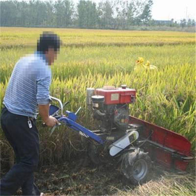割茬整齐四轮带割桑机 自动拨料芦苇收割机 侧铺式放片机