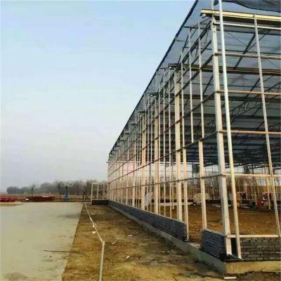 新疆哈密玻璃大棚建设厂家设计