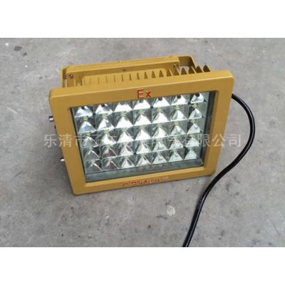 50W40W 防爆灯led 防爆led照明灯厂家直销