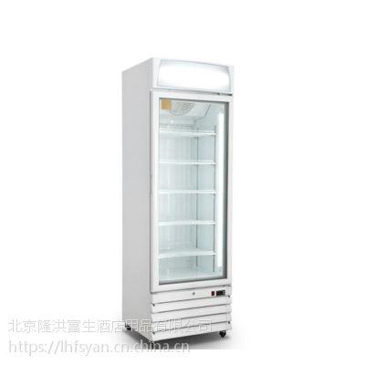 硬冰淇淋展示柜 商用立式冷冻柜 单门冰淇淋展示陈列柜价格