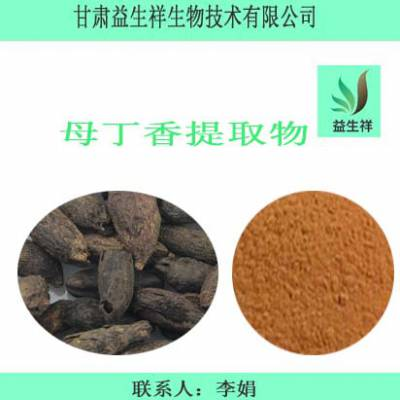 母丁香提取物 母丁香速溶粉 母丁香浸膏粉