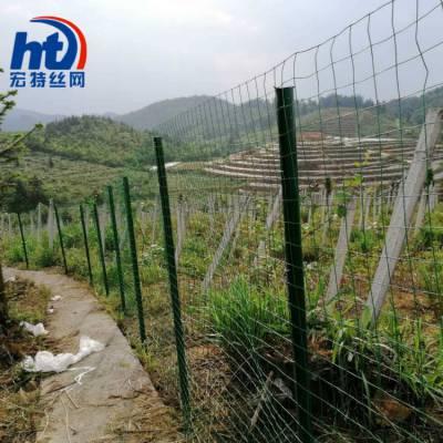 宏特围栏网厂家直销浸塑钢丝围栏网养鸡围栏网果园围栏网结实耐用